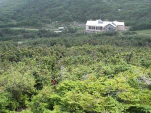 new hut 2011